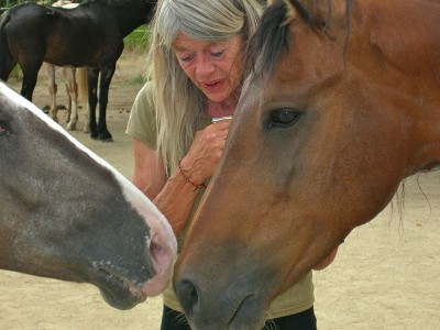Lucy Rees with two horses.