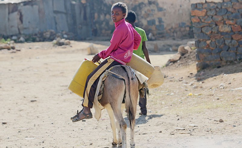 A girl is riding on a donkey in Eritrea.
